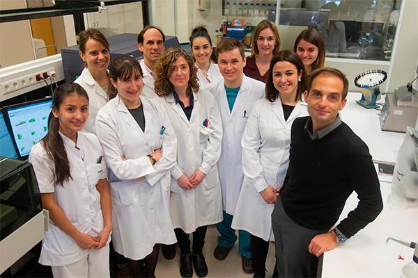la cun crea un anticuerpo para el mieloma mltiple con elevada eficacia en estudios preclnicos