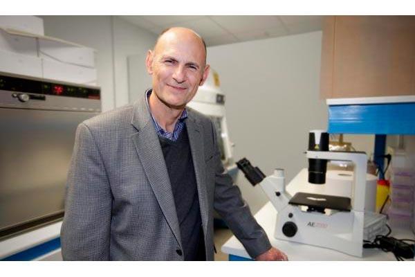 un cctel qumico permite generar cualquier tipo de tejido con clulas madre