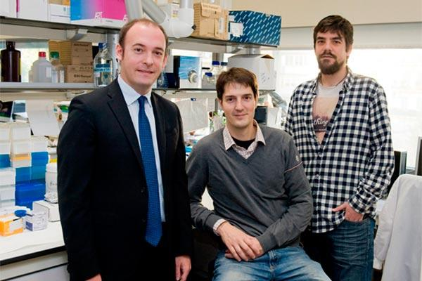 descifran los cambios biologicos en cancer de mama entre el tumor primario y la metastasis