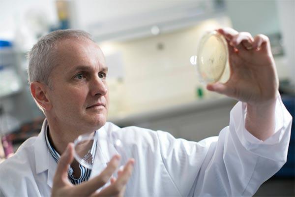 un estudio de la universidad ulster abordar el exceso de acn