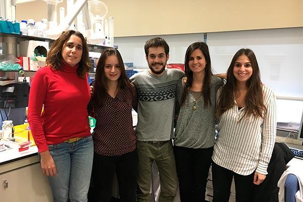 el instituto josep carreras halla una nueva diana teraputica para la leucemia mieloide aguda
