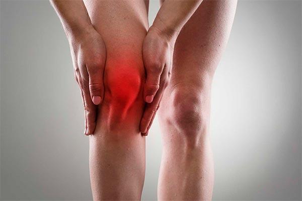 nuevo papel de las grasas saturadas en la etiologa de la artrosis