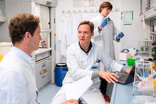 la clave del rechazo en el trasplante de mdula est en el intestino