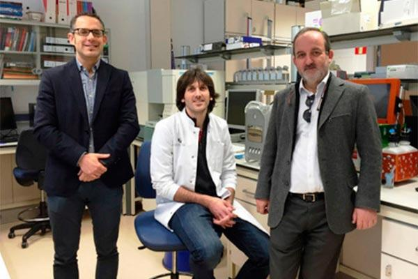 el grupo nanobiocel de la upvehu diseanbspdispositivos de gelatina para la regeneracin sea