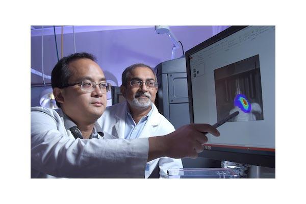 una combinacin de frmacos ya aprobados podra combatir el cncer cerebral difcil de tratar