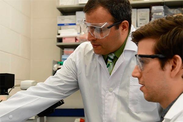 identifican el grupo de celulas inmunitarias responsables del shock toxico