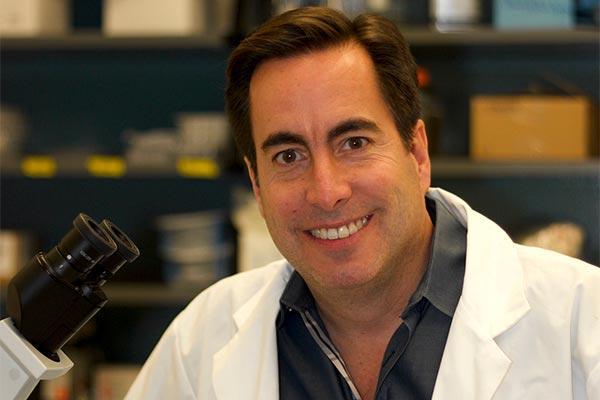 reconstitucin rpida del sistema inmunitario tras el trasplante de mdula sea