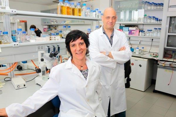 la upo en busca de dianas moleculares para combatir la esterilidad asociada a la diabetes