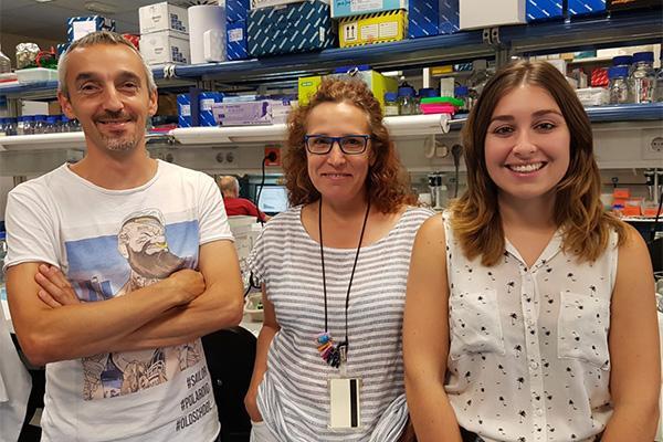el cnio identifica nuevas mutaciones relacionadas con tumores neuroendocrinos hereditarios