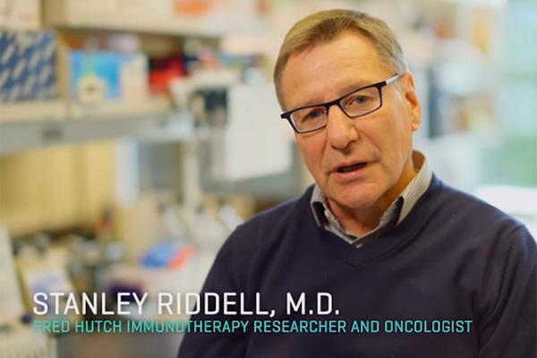 resultados prometedores con linfocitos quimricos en la leucemia de alto riesgo
