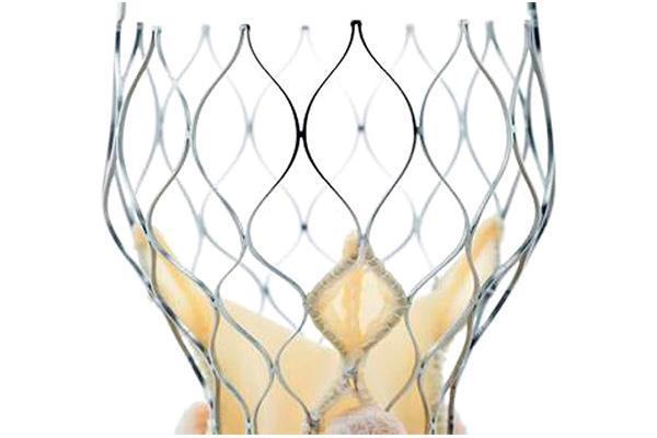 medtronic obtiene el marcado ce y la disponibilidad en europa de la valvula corevalve evolut pro