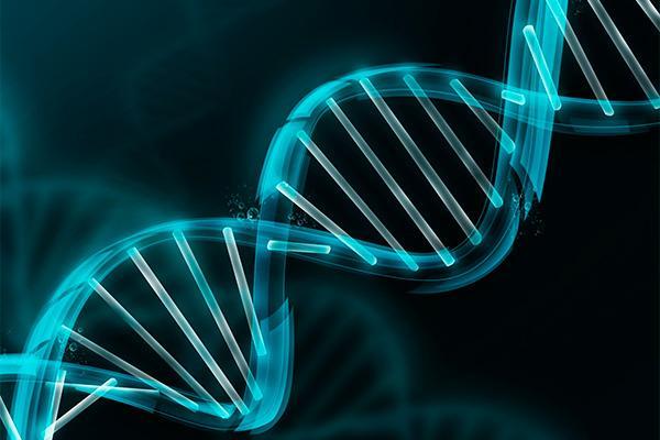 mutaciones espontaneas reconstituirian ciertos defectos geneticos