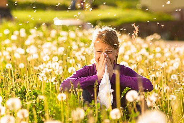 descubierta una subpoblacin de linfocitos t responsable de las alergias