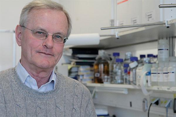un estudio en gemelos sugiere que la flora intestinal podria contribuir a la esclerosis multiple