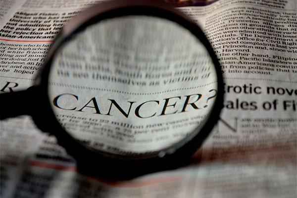 hallan un nuevo sndrome causado por mutaciones biallicas que predispone al cncer