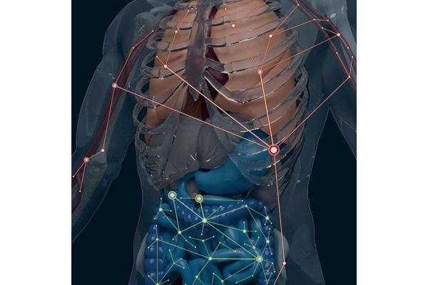 primer atlas del interactoma clonal de los linfocitos b humanos