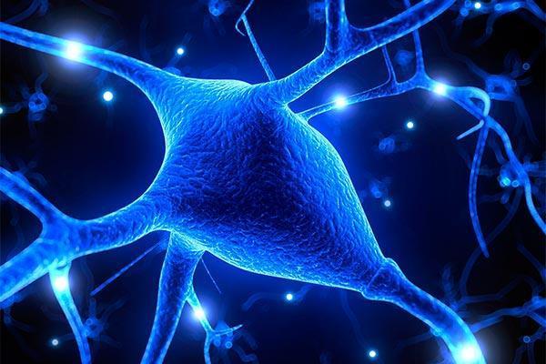 mayor riesgo de epilepsia en los supervivientes de sepsis