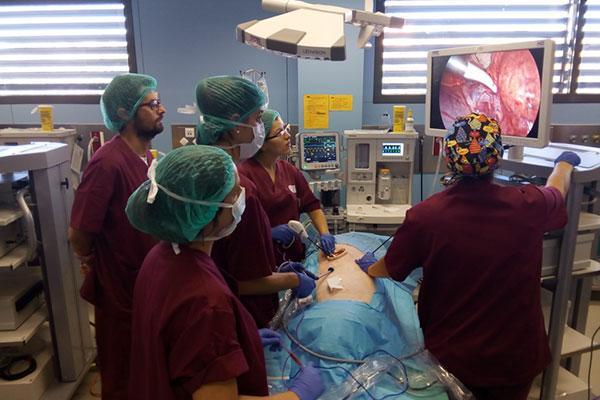 la recuperacion precoz pasa por un sellado correcto en cirugia toracica minimamente invasiva