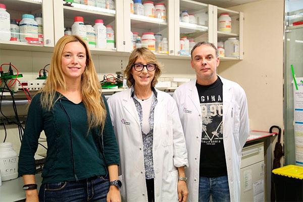 una proteina producida por el rinon podria ser una diana terapeutica para el sindrome metabolico