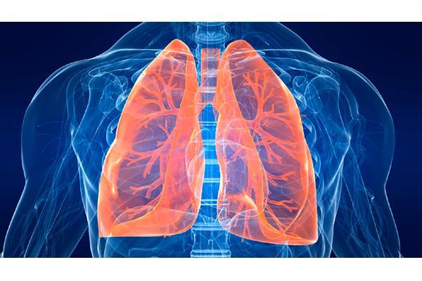 nuevo trazador para el diagnostico y monitorizacion de infecciones bacterianas pulmonares