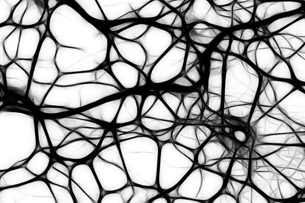 una nica diana teraputica para combatir el envejecimiento y la neurodegeneracin
