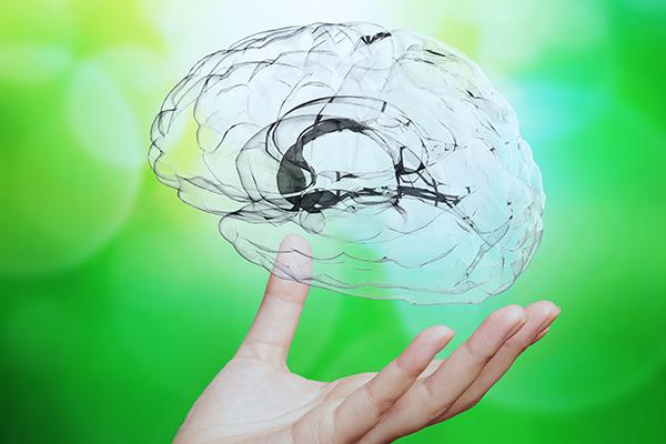 un farmaco experimental acelera la rehabilitacion en el dano cerebral