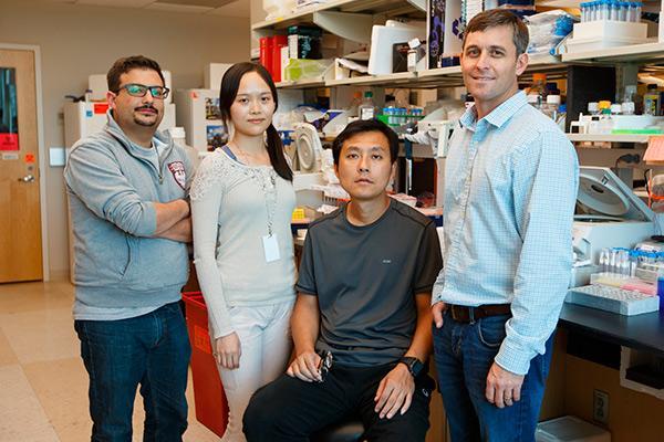 identificado un factor clave en la generacion de la memoria inmunologica
