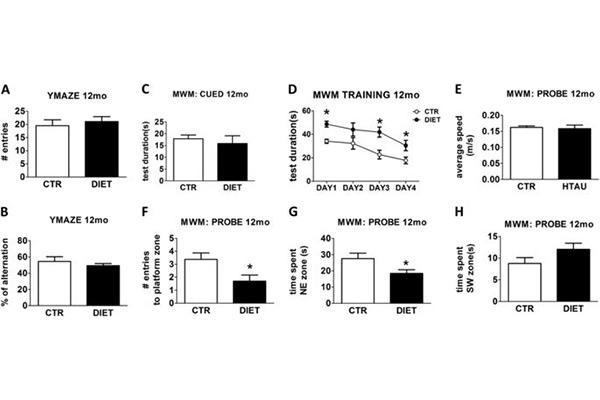 la homocistena cerebral es un factor de riesgo de enfermedades neurodegenerativas