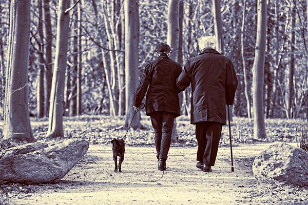 seis anos de ejercicio o de ausencia del mismo modifican el riesgo de insuficiencia cardiaca