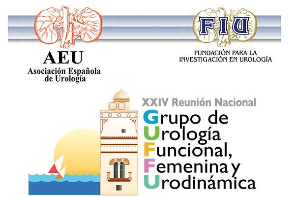todo preparado para la xxiv reunin del grupo de urologa funcional femenina y urodinmica de la aeu