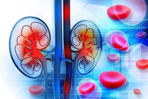 la-denervacion-renal-vuelve-al-escenario-del-tratamiento-antihiperte