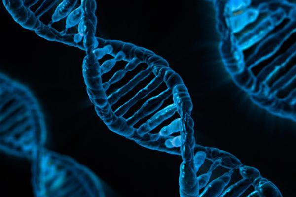 dos estudios sugieren que la tecnologa crisprcas9 aumenta el riesgo de cncer