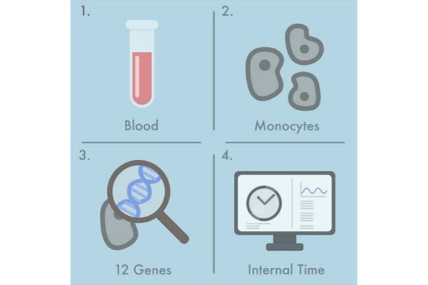 un sencillo test sanguineo determina el ritmo circadiano con elevada fiabilidad
