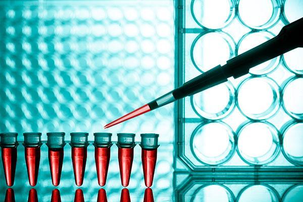 profarma donde se encuentran las mejores farmacuticas