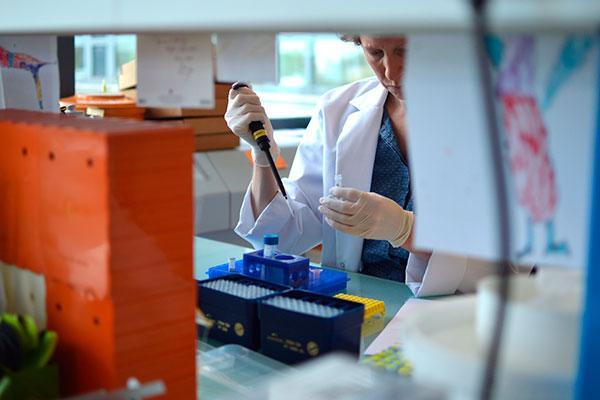 la inmunoterapia y el inmunograma claves en la lucha contra el cncer de pulmn