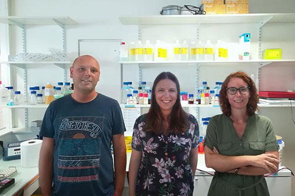la-proteina-supresora-de-tumores-p53-tiene-un-papel-protector-contra