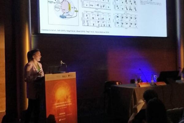 la lenalidomida y la ngs principales avances en el sindrome mielodisplasico
