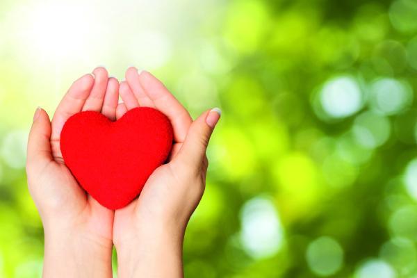 investigaciones del centro nacional de investigaciones cardiovasculares carlos iii