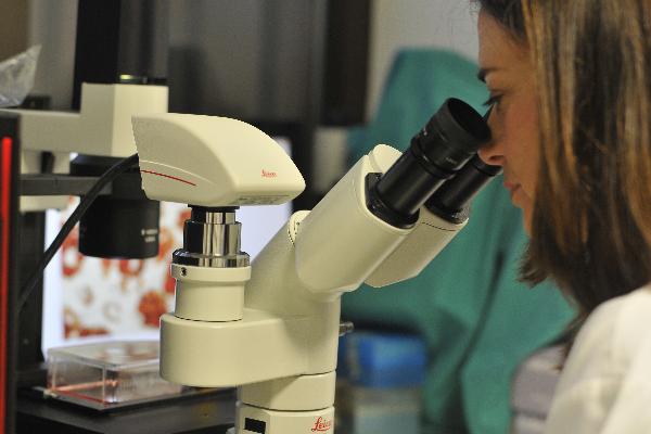 una protena recombinante arroja luz en la lucha contra la esclerosis mltiple