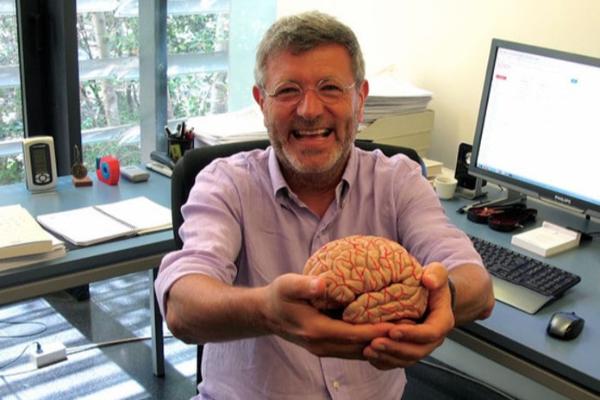 ahondan-en-la-arquitectura-celular-del-cerebro-humano