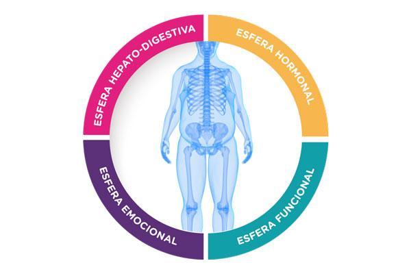 rythmonutritionsupsup combatir el sobrepeso empezando por sus causas
