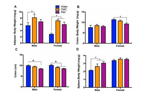 dos-aditivos-alimentarios-tienen-impacto-sobre-el-comportamiento