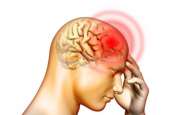 encefalitis poco frecuente pero infradeclarada