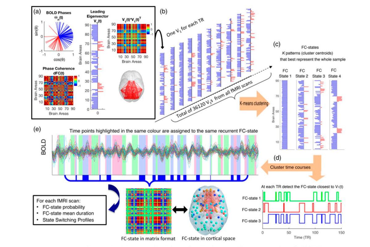 identificado-un-nuevo-perfil-neurobiologico-de-vulnerabilidad-en-la-d
