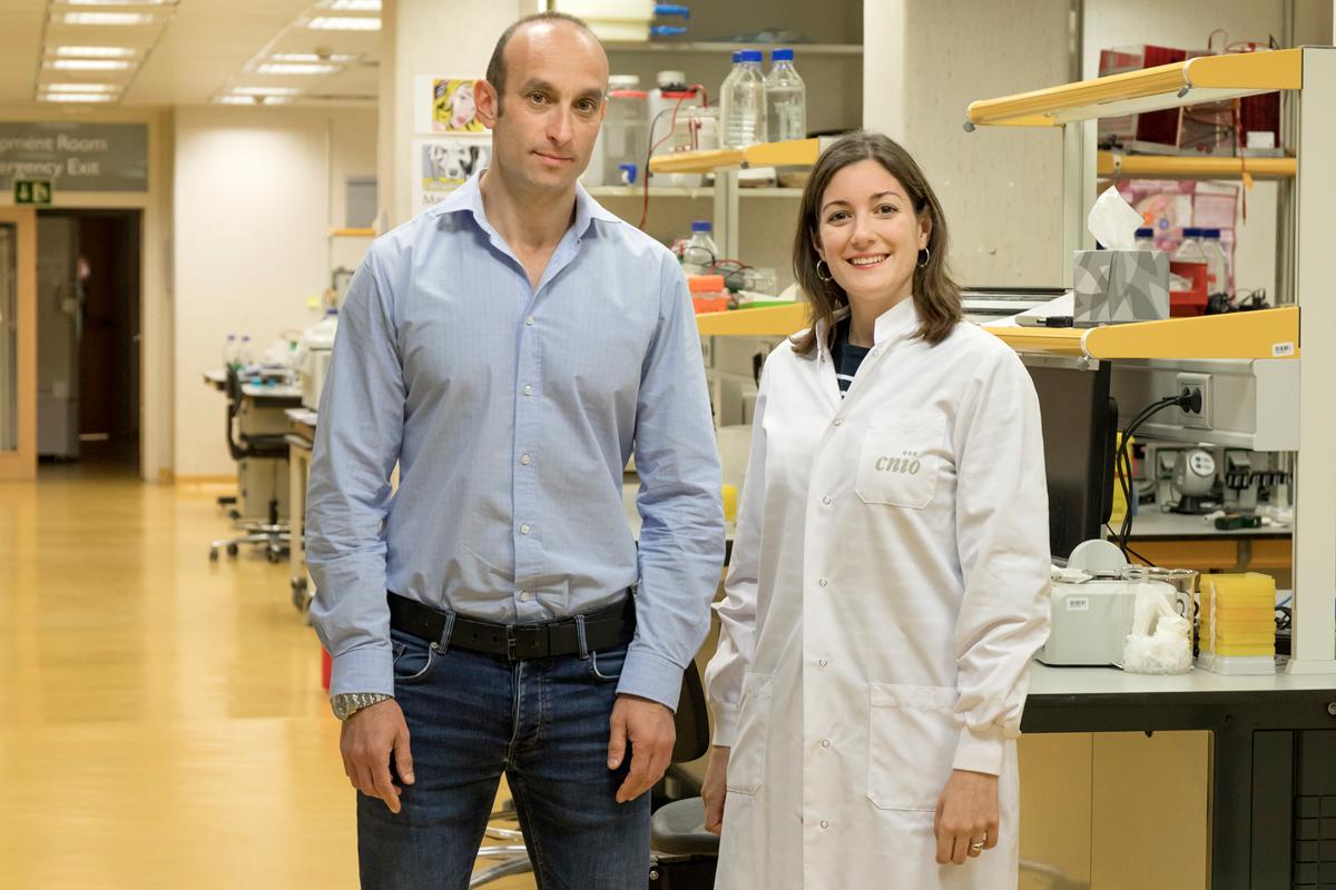 una-proteina-para-proteger-de-los-efectos-secundarios-de-la-radiotera