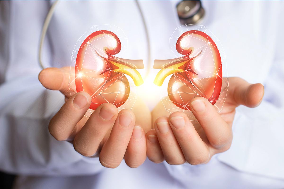 esperanza para las personas con enfermedad renal cronica
