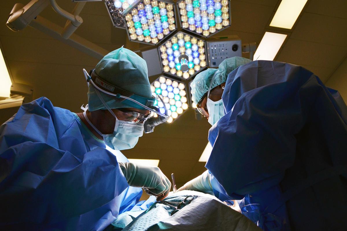 espana-ratifica-su-liderazgo-en-donacion-de-organos