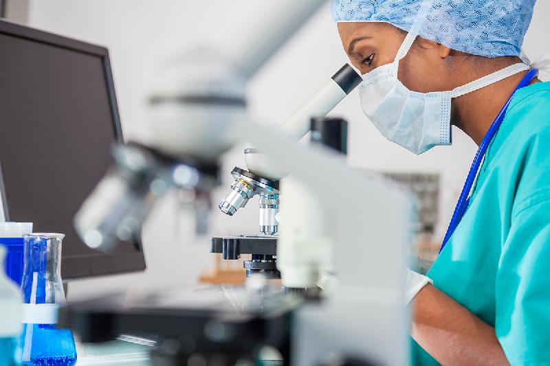 un-grupo-de-anticuerpos-muestra-potencial-en-medicina-regenerativa