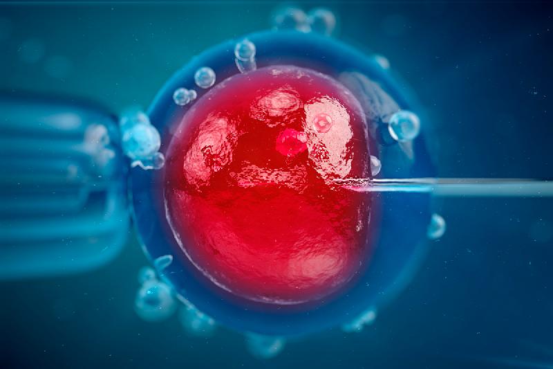 el-sistema-de-informacion-de-reproduccion-humana-asistida-cada-vez