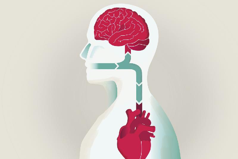 relacion-entre-la-enfermedad-cardiovascular-y-las-patologias-bucoden